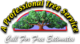 A Professional Tree Service